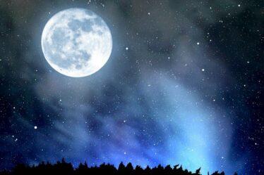 Лунный календарь стрижек поможет подобрать дату идеальной прически